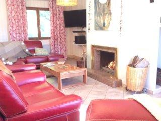 Salon , feu de cheminée avec bois à volonté, Home Cinéma.
