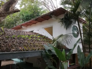 Studio SPA in Jungle for birdwaching Pto. Vallarta