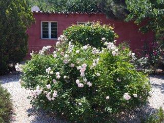 le clos des cigales /les lauriers roses /