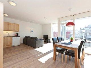 Njálsgata - One-Bedroom Apartment