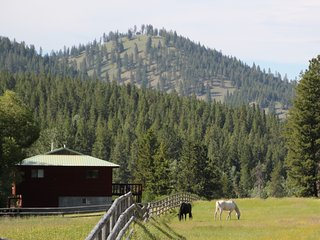Piquett Creek Ranch, Guest Ranch, Small Home (Large Home listing as well)