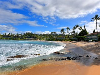 Spring Special! $79 May & June Dates Open! Studio Steps to Napili Bay!, Lahaina