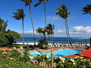 New Studio Unit at Napili Shores! Fantastic Location- Paradise on Maui!