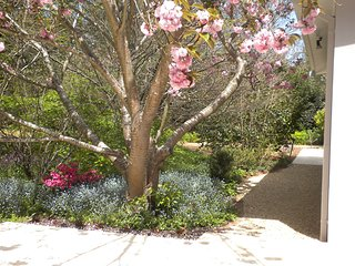 THE DELL - Southern Highlands NSW - SPRING GARDENS