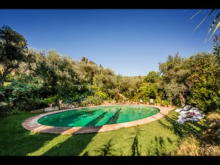 Villa's private pool