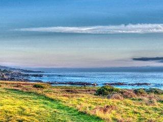 Mid-century home w/ ocean views, deck & hot tub - walk to beaches & shared pool!, Sea Ranch