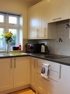 Kitchen with mini hob, fridge, microwave combination/convection oven, toaster and kettle.