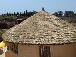 Sama Africa, Ngaparou