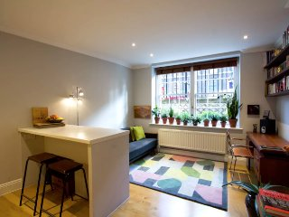 Cosy, central flat next to canal & ANGEL tube