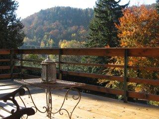 Maison de vacances en Alsace Le Wineck ****, Niederbronn-Les-Bains