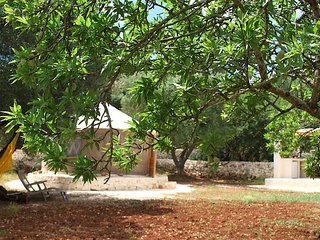 Romantic Yurt in Olive grove, Ostuni