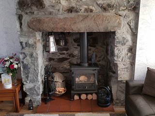the cosy log fire