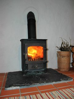 The wonderful wood burning stove