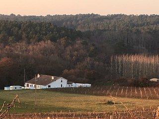La Maison Lowe, Buzet-sur-Baise