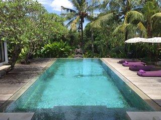 Tempat Damai Luxury 3 Bedroom Villa, Rice Field View, Canggu