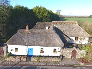 Spacious Authentic Thatched Cottage 30 minutes from Dublin
