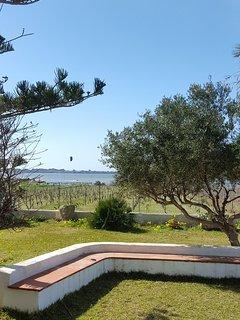 Vista del giardino, confinante con lo spot di kitesurf
