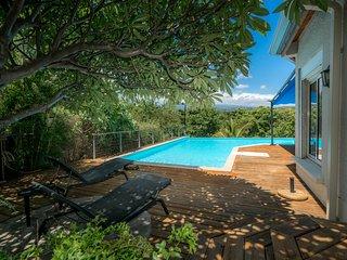 Villa Armagnac avec piscine a debordement