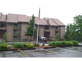 Seven Springs Resort Area/Great Rates Great Condo, Champion