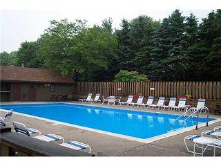 Seven Springs Resort Area/Great Rates Great Condo