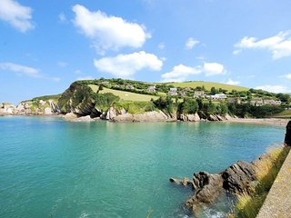 42853 Cottage in Combe Martin