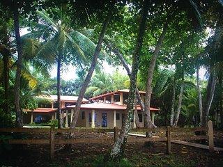 Casa Bejuco from beach.