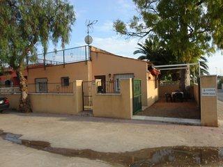 Pintor Casas