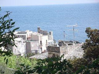 A  ERBALUNGA charmant F2 avec terrasse bois et vue sur mer  l