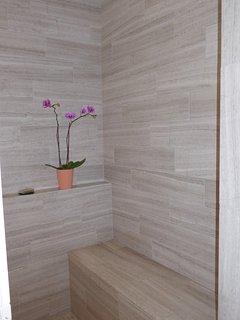 New master bath walk-in shower