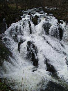 Swallow Falls.