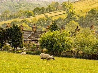PK941 Cottage in Little Hayfie, Little Hayfield