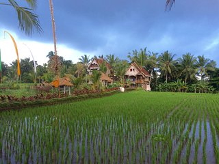 Unique Eco-Luxury Rice Field Retreat close to Ubud Centre - The Treehouse