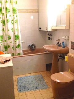 bathroom with bathtub and hand shower application
