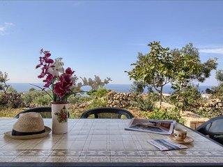Il Pino - splendida villetta vista mare con giardino