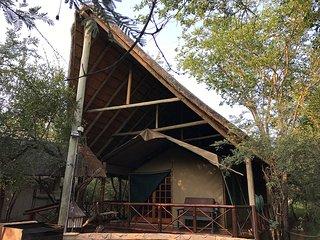 Acacia Tent facade
