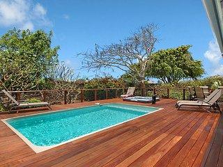 Hawaiian Hibiscus home- AC, private pool/SPA, 1.3 mile to Poipu beach in GOLF