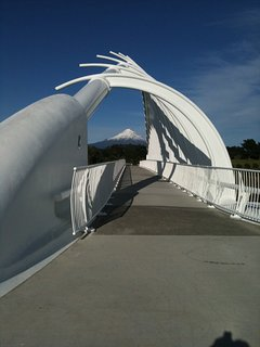 Te Wera Wera Bridge with mountain view