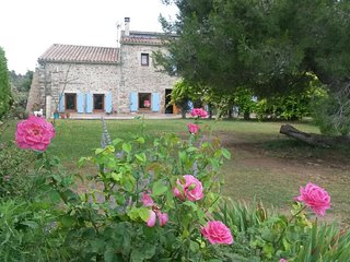 Stunning stone farmhouse with pool surrounded by vineyards just outside village