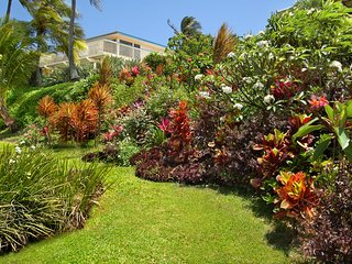 Bird of Paradise, 4BR,3.5BA, private warm pool, walk to beaches, wonderful views