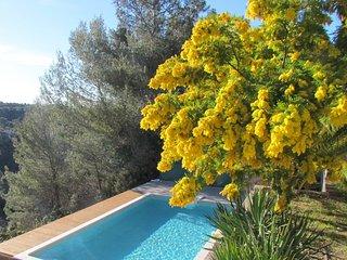 Grande maison provençale colline niçoise, Colomars