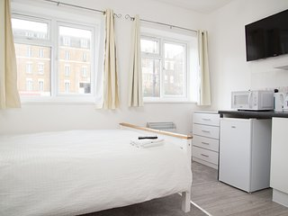 Spacious Bright Studio Apartment Peckham - 11