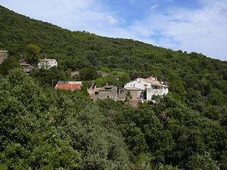 Lief huisje in natuurpark Haut-Languedoc MET ZONNIG DAKTERRAS in Zuid Frankrijk, Cabrerolles