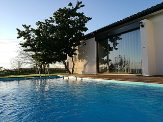 A country house between cities, Vila Nova de Famalicao