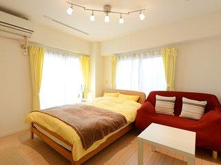 Nishi-Ogikubo 1BR apartment Type-C (SSH-C) 3F