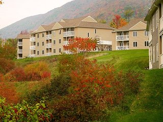 Vacation Village in the Berkshires - Fri-Fri, Sat-Sat, Sun-Sun only!, Hancock