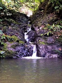 Your private waterfall swimming hole a 10 minute walk away.
