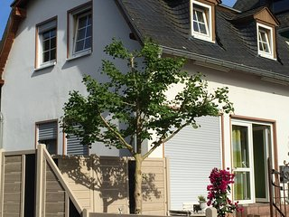 Cheery flat near the river Moselle, Traben-Trarbach