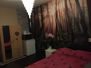 Cozy room in Amsterdam Noord