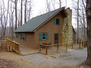 Private Pet-Friendly 3BR Blue Ridge Mtn Cabin - Huge Deck