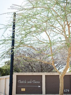 Fever Tree at entrance
